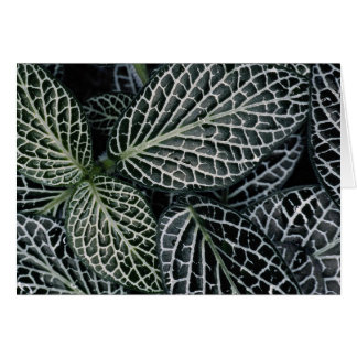Green plant texture greeting card