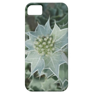 Green Plant Thorn Summer iPhone case