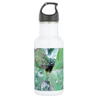 Green plant with waterdrops 18oz water bottle