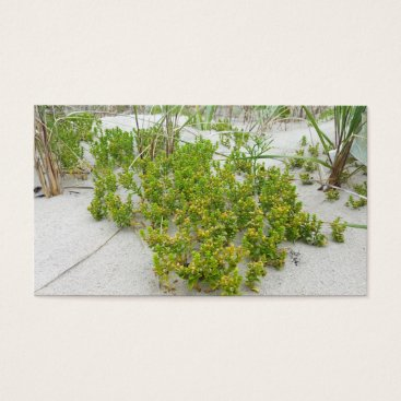 Beach Themed Green plants at the beach business card