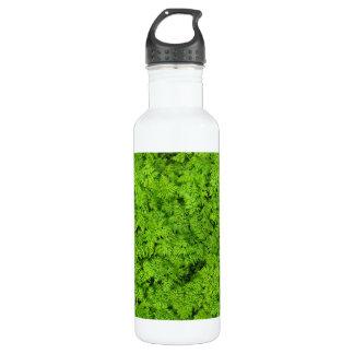 Green Plants Fern Foliage Texture Background 24oz Water Bottle