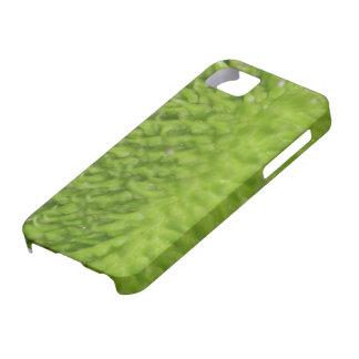 Green Pod iPhone SE/5/5s Case