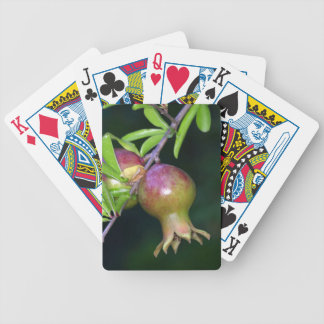 Green pomegranate fruit bicycle playing cards