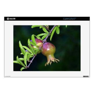 Green pomegranate fruit laptop decals