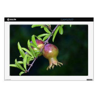 Green pomegranate fruit laptop skins