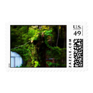 Green Postage Stamp