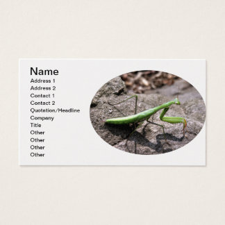 Green Preying Mantis on a Rock Business Card