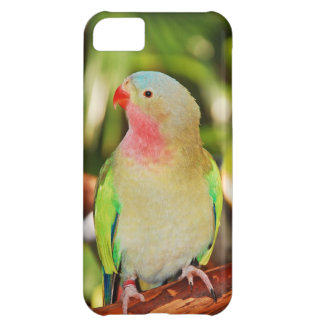 Green princess parakeet print case for iPhone 5C
