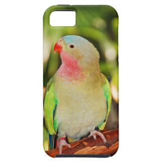 Green princess parakeet print iPhone SE/5/5s case