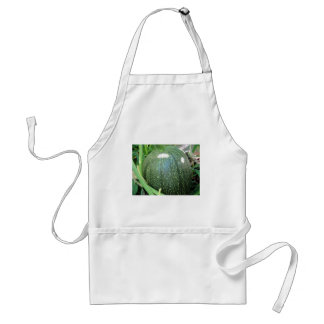 Green Pumpkin Adult Apron