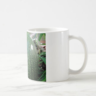 Green Pumpkin Mug