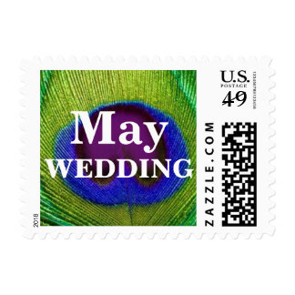 Green Purple Peacock Feather May Wedding Stamps