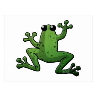 Green Rain Frog Postcard