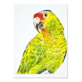 "Green Red Lored Amazon Parrot 4.5"" X 6.25"" Invitation Card"