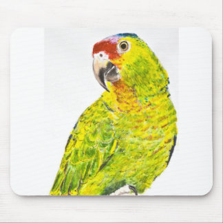 Green Red Lored Amazon Parrot Mouse Pad