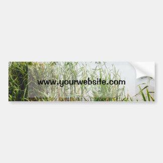 Green Reed, Grey Lake Background, Nature Bumper Sticker