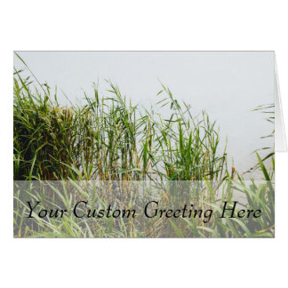 Green Reed, Grey Lake Background, Nature Card