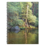 Green Reflections Spiral Note Book