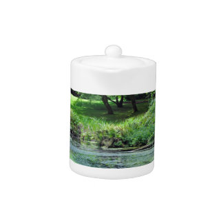 Green reflective pond teapot