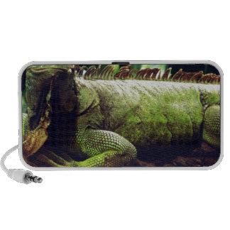 Green Reptiles Notebook Speakers
