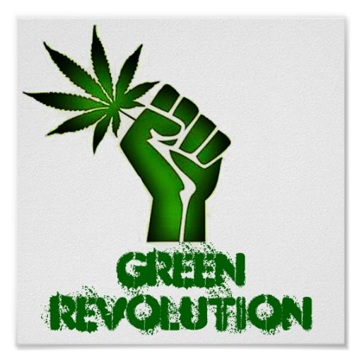 green revolution Green revolution @slssgreenrev green revolution is a movement towards bettering our environment and reducing our carbon footprint through awareness campaigns in our school and community.