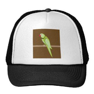 Green ringneck parrot vector trucker hat