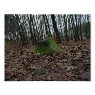Green rock in forest, autumn photography, polish poster