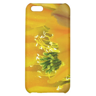 GREEN RODS iPhone 5C COVERS