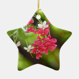 Green Roof- Beautiful flowers Double-Sided Star Ceramic Christmas Ornament