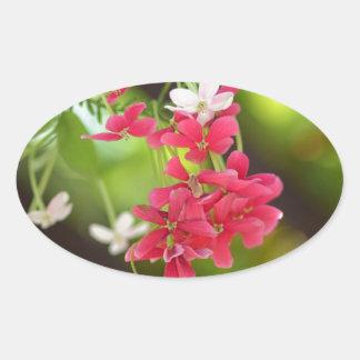 Green Roof- Beautiful flowers Oval Sticker
