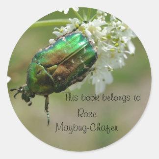 Green rose chafer beetle sticker