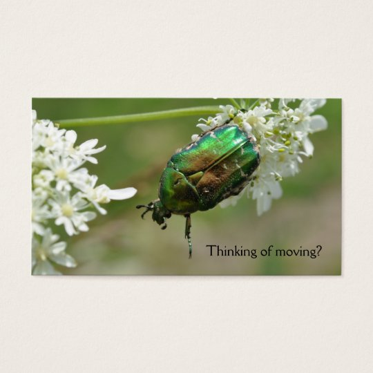 Green rose chafer business card