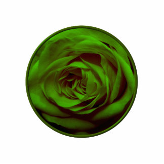 Green Rose Photo Cutout