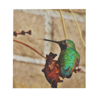 green ruby hummingbird memo notepads