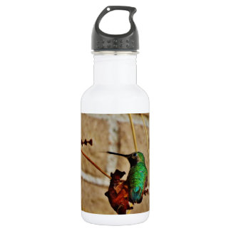 green ruby hummingbird 18oz water bottle
