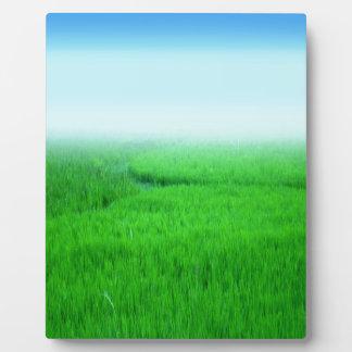 Green Rural Corn Field Plaque