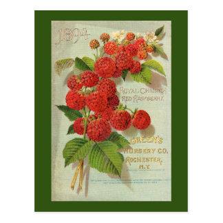 Green's Nursery Co. Advertisement Postcard