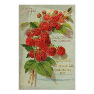 Green's Nursery Co. Advertisement Poster