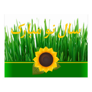 Green Sabzeh Sunflower Persian New Year Nowruz Postcard