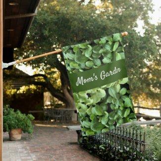 Green Salad leaves  Vegetable in garden House Flag