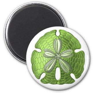 Green Sand Dollar Magnet