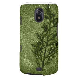 Green Sandy Beach Textures Galaxy Nexus Covers