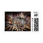 Green Sea Anemone Postage Stamp
