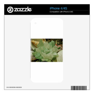 Green Sea Glass Flower Skin For iPhone 4S