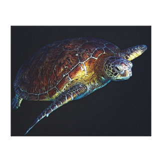 Green Sea Turle - Stretched Canvas