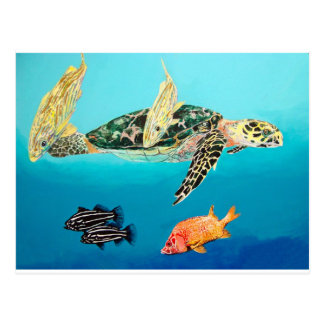 Green sea turtle and grunt postcard