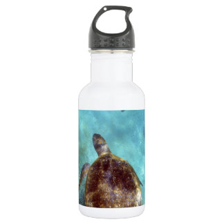 Green sea turtle and sea lion underwater Galapagos Water Bottle