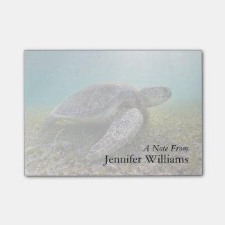 Green Sea Turtle At Dusk   Akumal Bay Post-it® Notes
