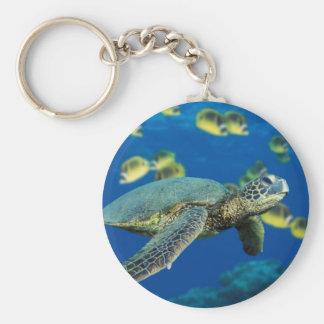 Green Sea Turtle Basic Round Button Keychain