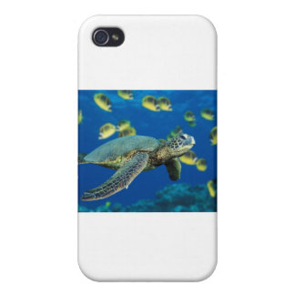 Green Sea Turtle Case For iPhone 4